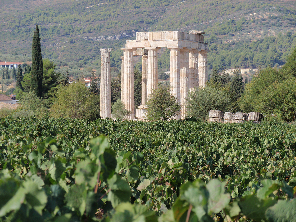 Nemea Wine Tour - MY ATHENS TOUR